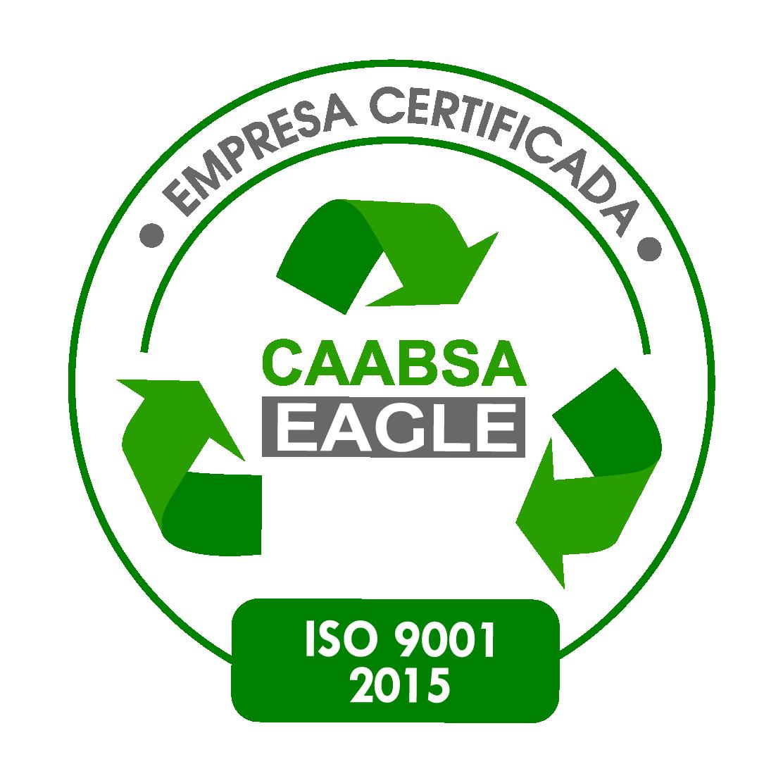 Grupo CAABSA logo